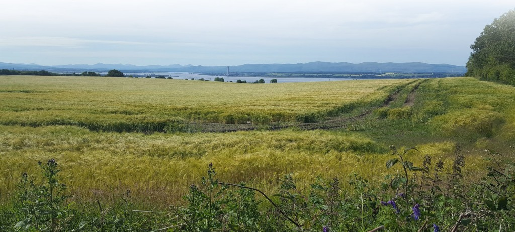 The fields around Bo'mains Farm offer superb views across the Firth of Forth.